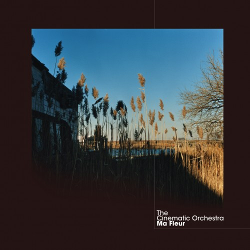 Ma Fleur - The Cinematic Orchestra