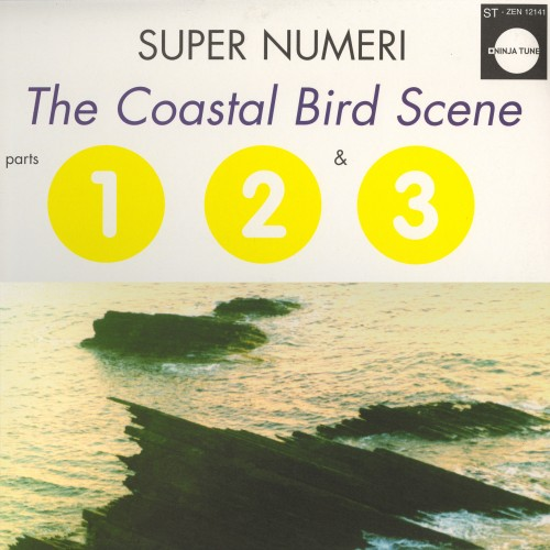 The Coastal Bird Scene - Super Numeri